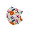 Multicolor Nature Printed Disposable Face Mask Adult 3-ply(50 PCS - Any 4 colors)